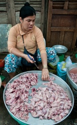 Dresses Rice Rats - Mekong River, Vietnam