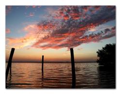Pine Island Sunset