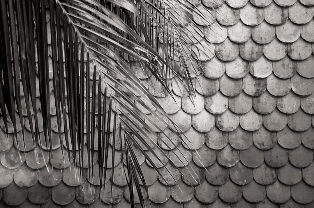 Tile Roof - Phenom Phen, Cambodia