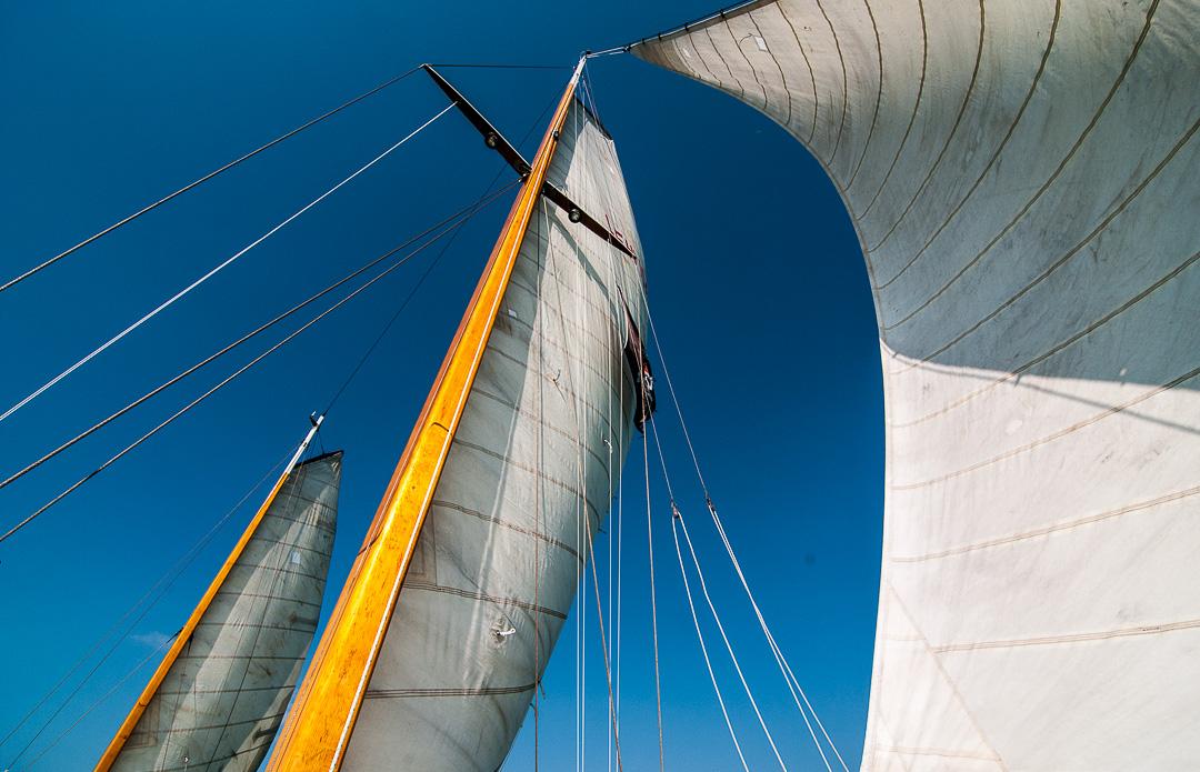 Sailing Alondra