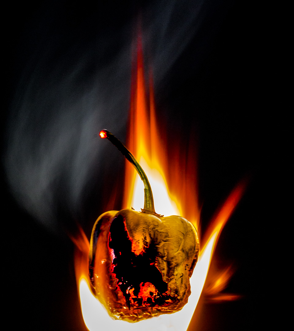 Burning Chilie Pepper