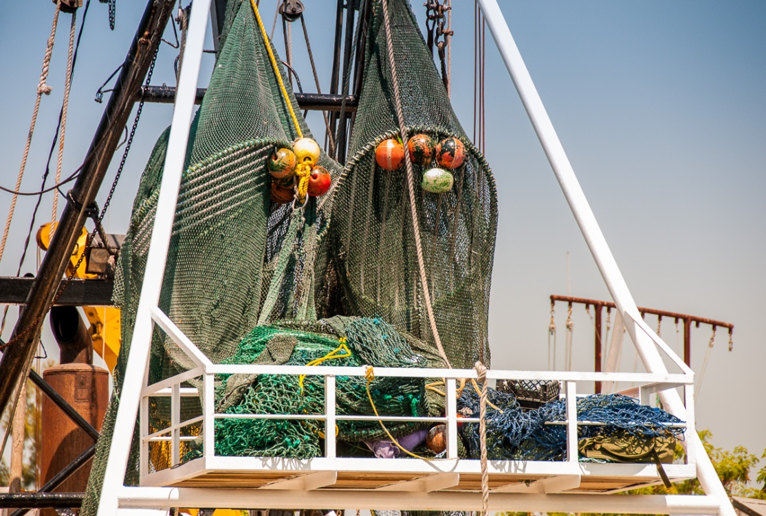 Shrimp Boats, Ft Myers photos-9