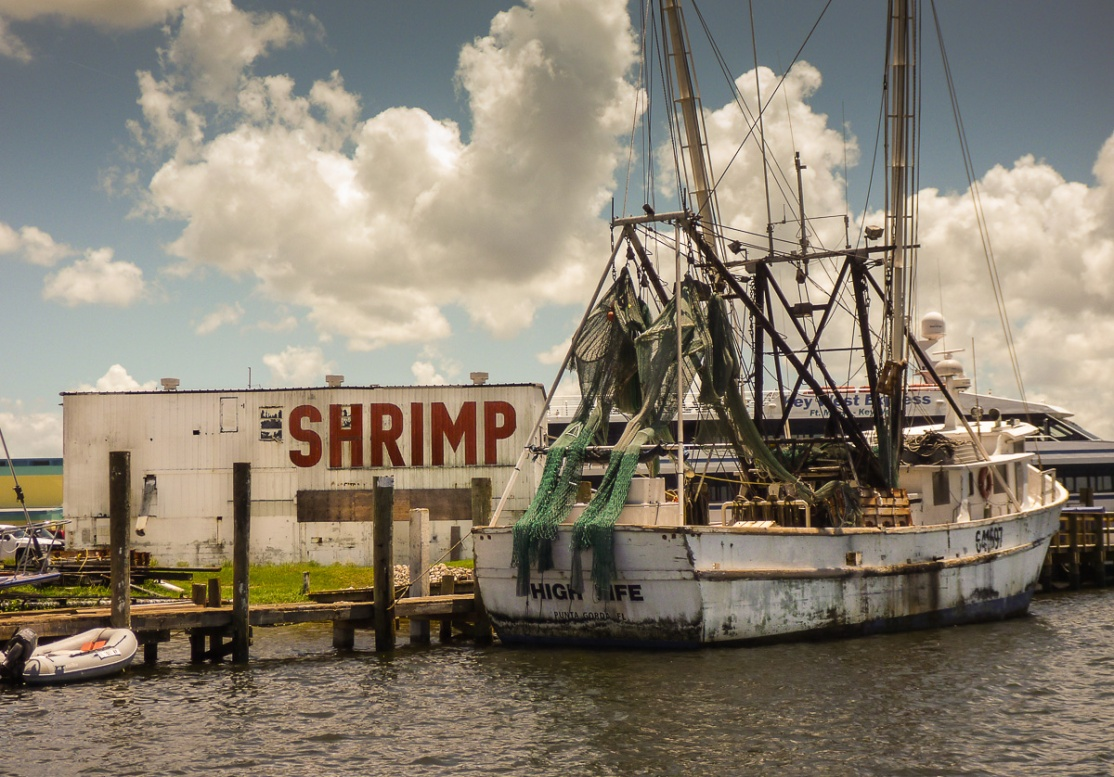 Shrimp Boats, Ft Myers photos