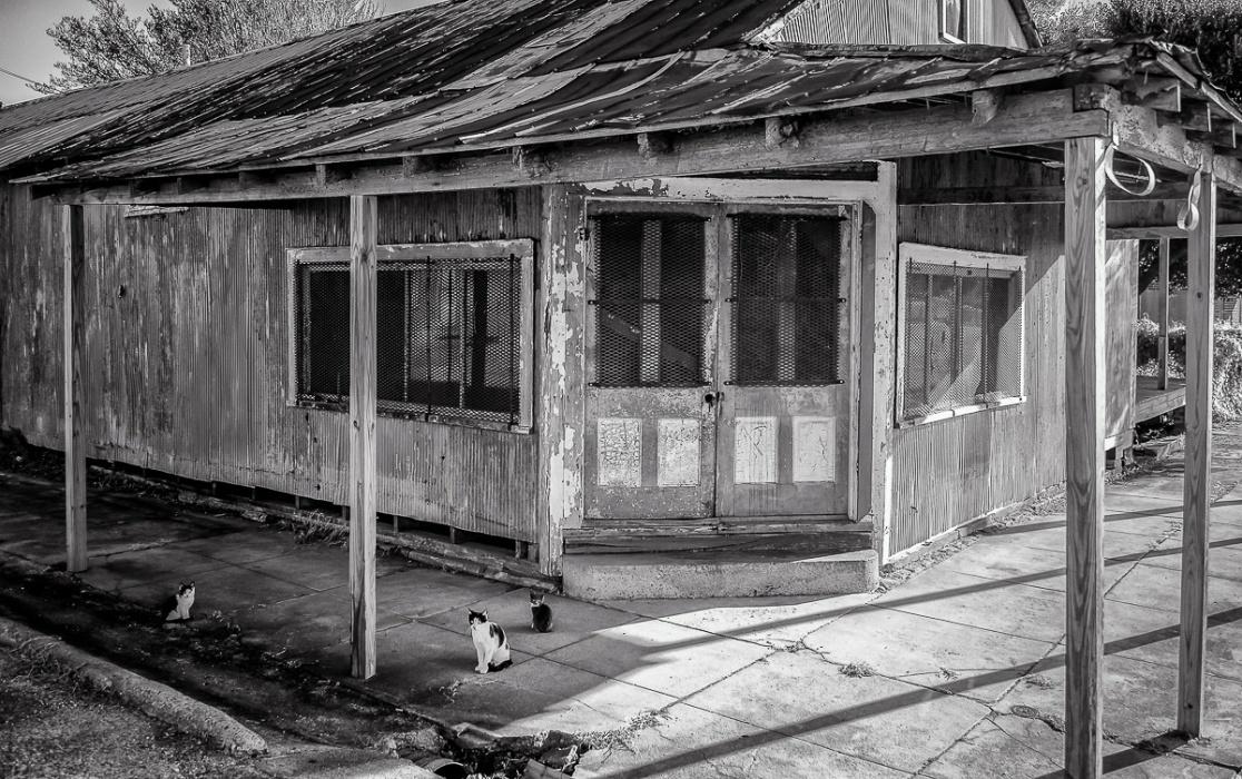 Abandoned in Natchez