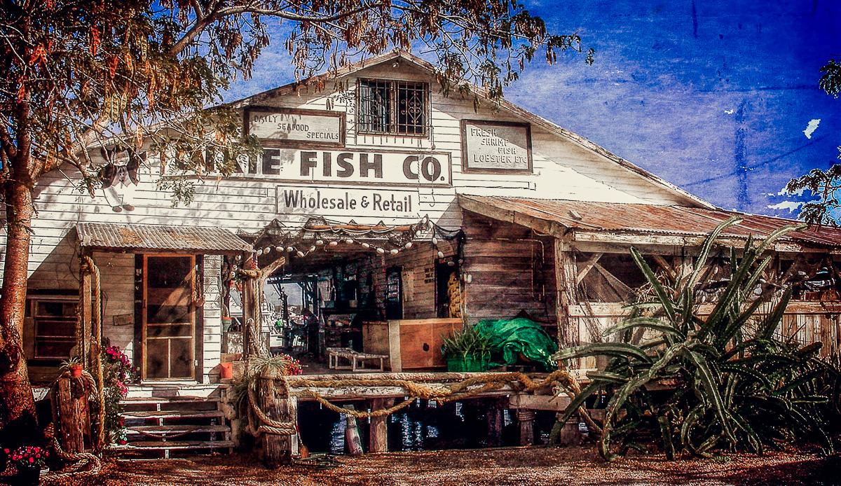 Dixie fish company ron mayhew 39 s blog for Dixie fish company