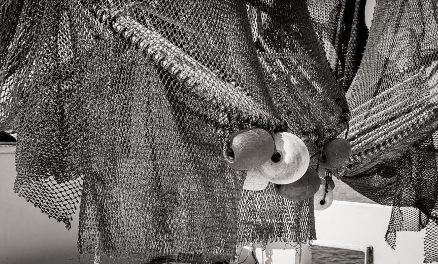 Shrimper's Nets