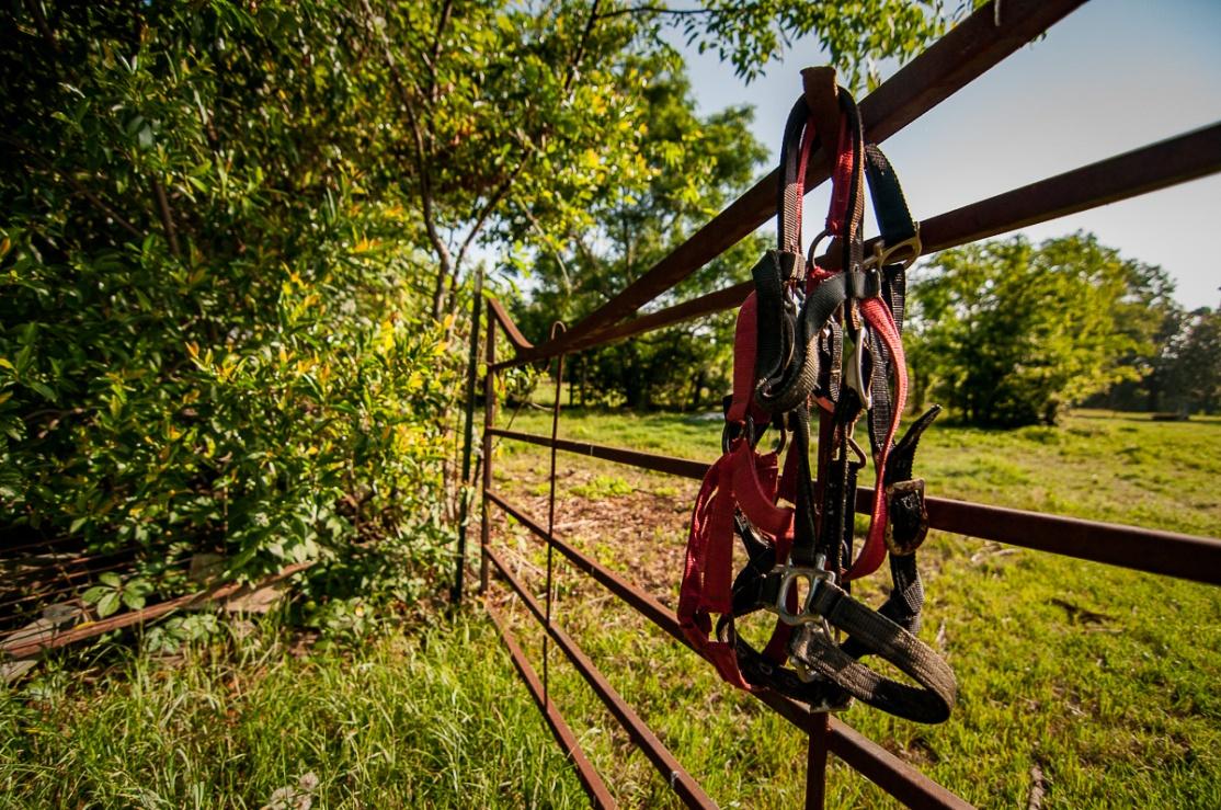 Rural South Photo Essay