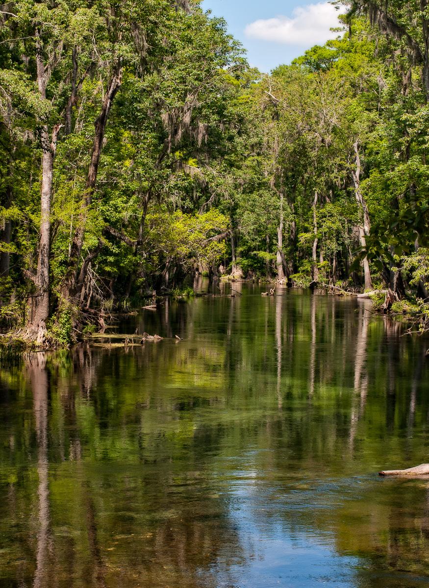 North Florida-Deep South